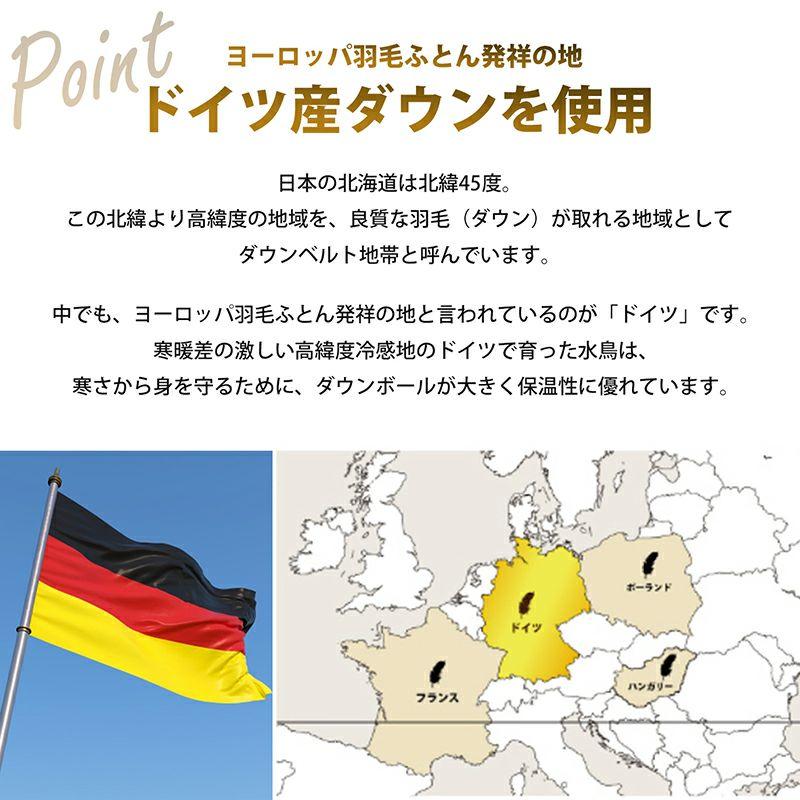 【2枚セット特価】羽毛肌掛けふとん日本製ドイツ産マザーグースダウン95% シングルロング