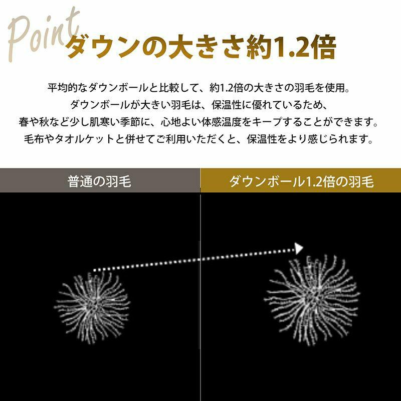 【2枚セット特価】羽毛肌掛けふとん日本製ドイツ産グース90% セミダブルロングタイプ